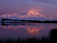 hugh-rose-mt-mckinley-reflected-in-pond-denali-national-park-alaska-usa.jpg